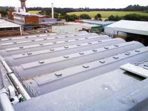 Food Processing Plant Barrell Roof